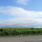 Blue Skies and Gravel Roads - Courthouse Hill, NS by Lady-Di