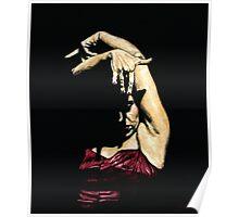 Seclusion del Flamenco Poster