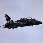 BAe Hawk - Silverstone Air 2009 by Richard Durrant