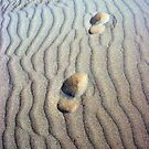 footprints in the sand  by sailing