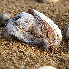 Sandy rock by mando89