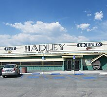 Hadley's Fruit Stand in Banning, California... A little of the old stands are still around by DonnaMoore