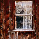 WINDOW AND OLD LACE by dgcheney