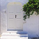 White Door   by Christine Wilson