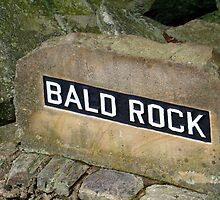 Bald Rock by Wanda Raines