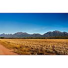 Stirling Ranges by Kirk  Hille