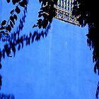A window on Majorelle garden by monaiman