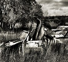 Parts For Sale  2 ( BoneYard Series ) by Carla Jensen
