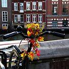 Amsterdam by Bluesrose