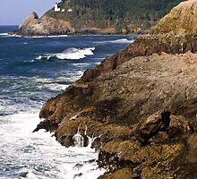 Heceta Head Lighthouse by ericasmithphoto