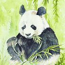 Giant Panda by morgansartworld