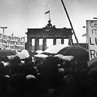 Berlin Wall by Peter Davidson