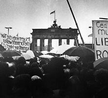 Berlin Wall by Peter Davidson