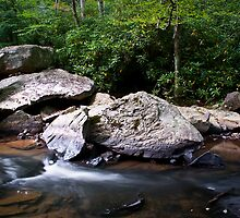 Glade Creek by LeeAnne Emrick