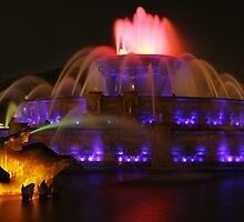 The Horse in Buckingham Fountain by Adam Bykowski