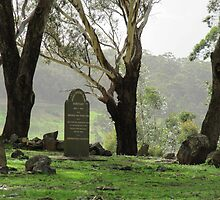 Pennyweight Flat Cemetery by Sherene Clow