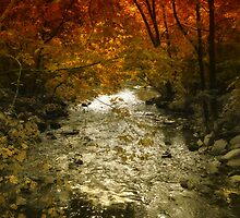 Autumn on the River by Jessica Jenney