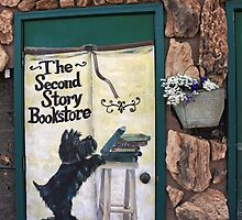 Second Story Bookstore by Lynne Prestebak