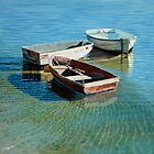 Moored in shallow water by Freda Surgenor