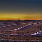 September Evening On The Prairie by PFrogg
