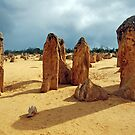 The Pinnacles, Cervantes, Western Australia by Adrian Paul