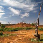 dead tree 1 by Chris Parker