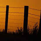 The Sun hasn't set on this fence yet ! by Phil Mitchell