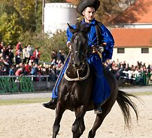 Hungarian rider at Lipica open day, Slovenia by Ian Middleton