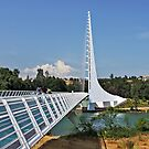 Sundial Bridge - Turtle Bay, California by Christine Till  @    CT-Graphics