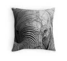 Elephant Stare Throw Pillow