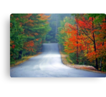 Scenic Road By Zephyr Lake Canvas Print