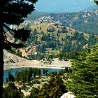 Small Lake Near Mt. Lassen by Slaughter58