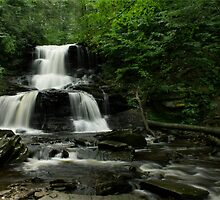TUSCARORA FALLS ~ RICKETTS GLEN by Lori Deiter