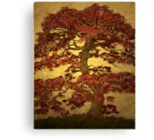 Red Maple Bonsai Canvas Print