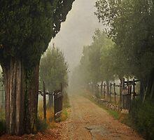 The vanishing road by M a r t a P h o t o g r a p h y