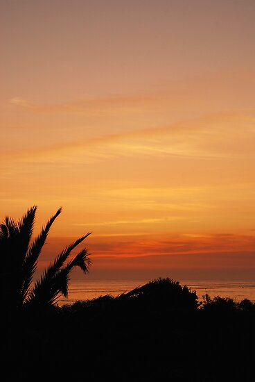 Sunset, Espinho by SHOI Images