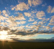 Canterbury Plains Sunset by Paul Duckett