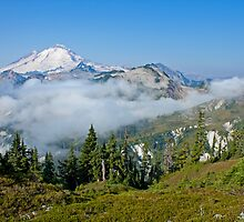 Mt. Baker  by Barb White