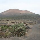 Lanzarote Vineyard below the Mountain by Allen Lucas
