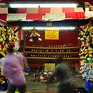 NY State Fair 2009 VII by PJS15204
