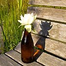 Lily Beer by Mike Cressy