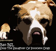 Ban BSL by Zdogs