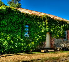 Ok Who Forgot to Weed ? - Beechworth - The HDR Series by Philip Johnson