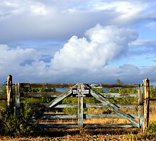 The Gates To Heaven by charlena