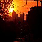 CBD Sunset by wolfcat