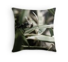 Foraging Ant Throw Pillow