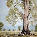 Under A Shady Tree by Diko