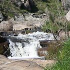 Adelong Falls by Julie Bennett Trigg