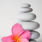 Zen Pebbles and Frangipani Flower by Alex  Bramwell