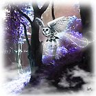 Flight of the Wise by dimarie